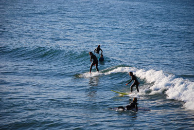 Surf discovery Beginners
